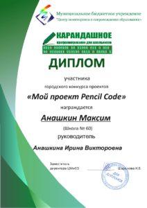 Диплом Анашкин